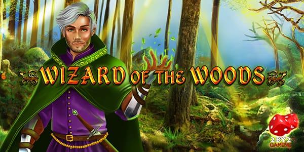 Wizard of the Woods Slots Mega Reel