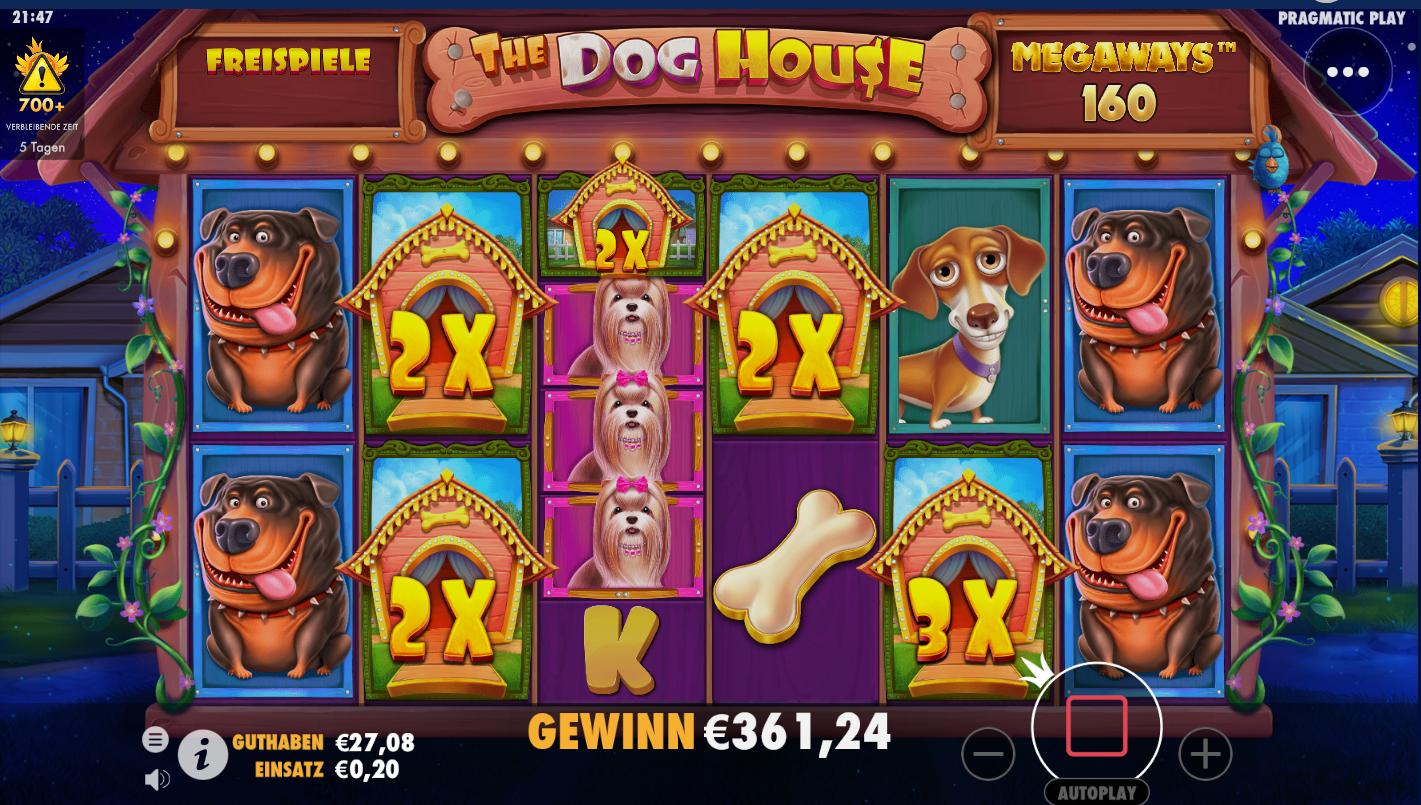 The Dog House Megaways Slot Reels