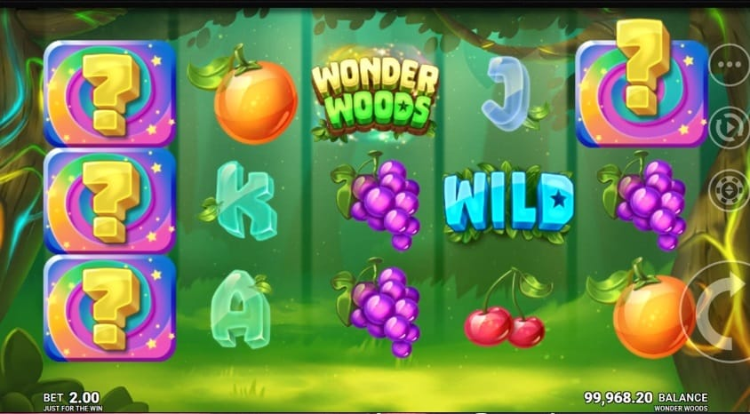 Wonder Woods Slots Game