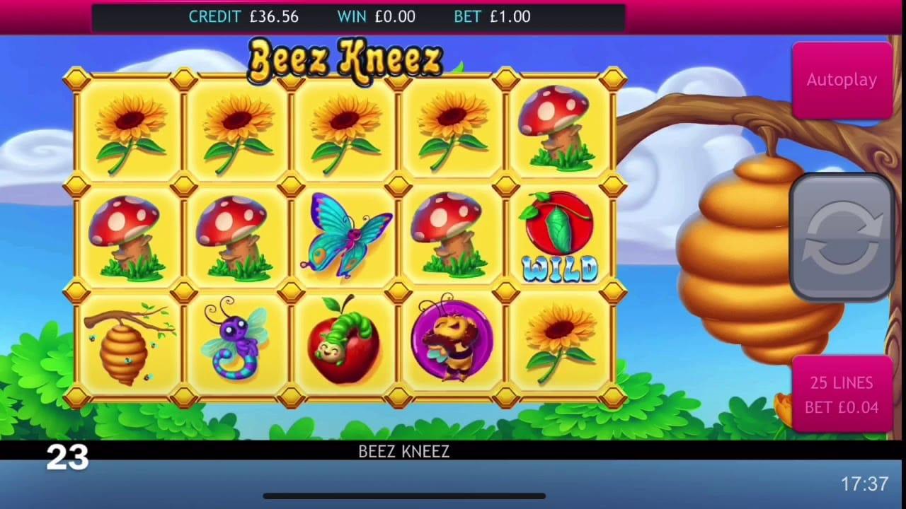 Beez Kneez Slot Machine