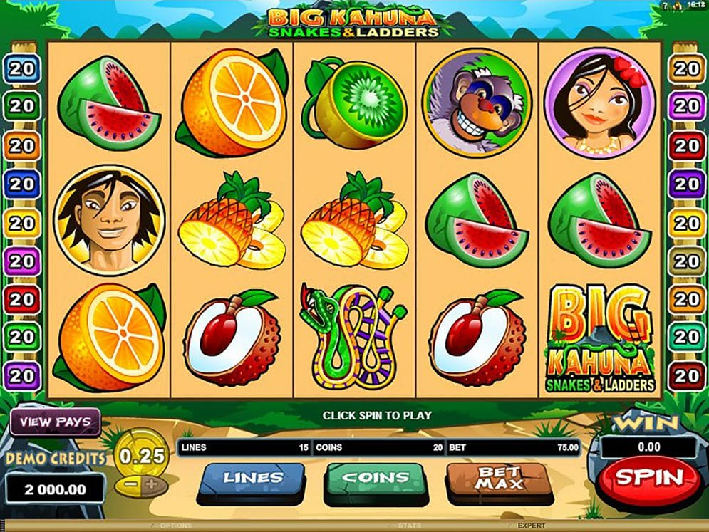 big kahuna snakes and ladders slot game