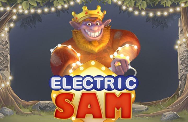 Electric Sam Logo