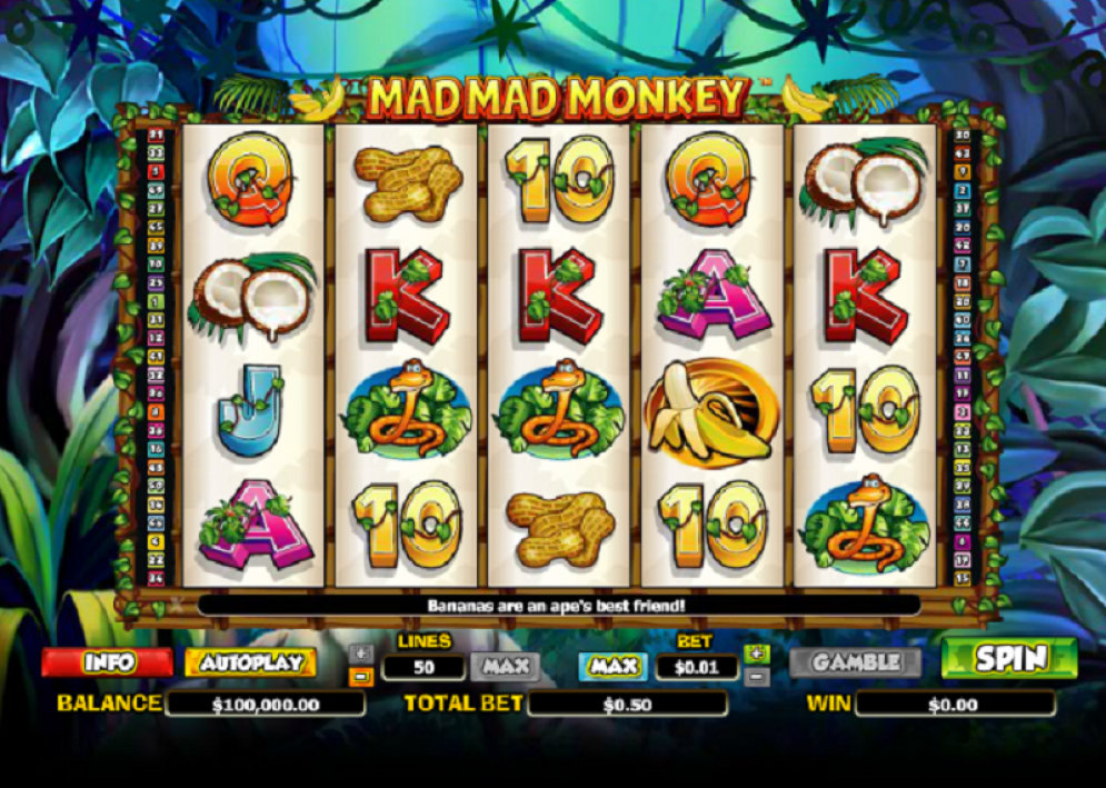 Mad Mad Monkey Slot Features Image