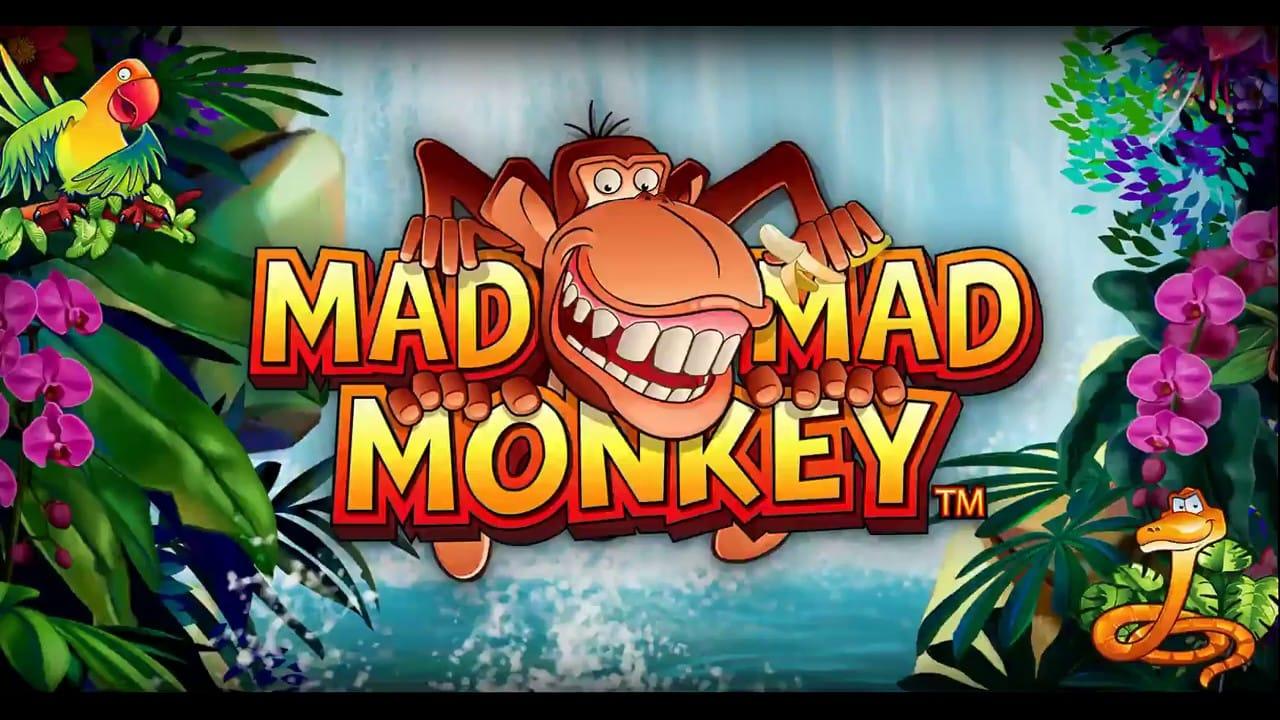 Mad Mad Monkey Slots Mega Reel