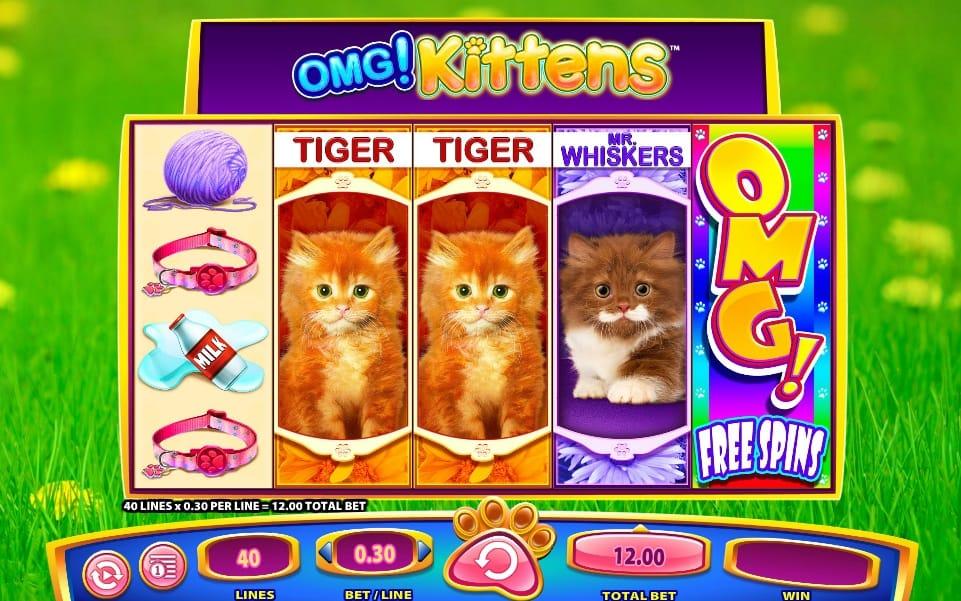 OMG! Kittens Slots UK