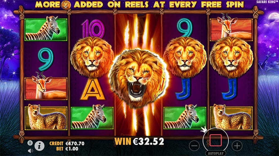 Safari King Slots UK