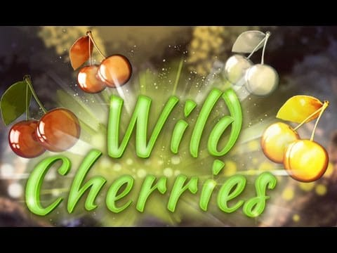 Wild Cherry Slots Mega Reel